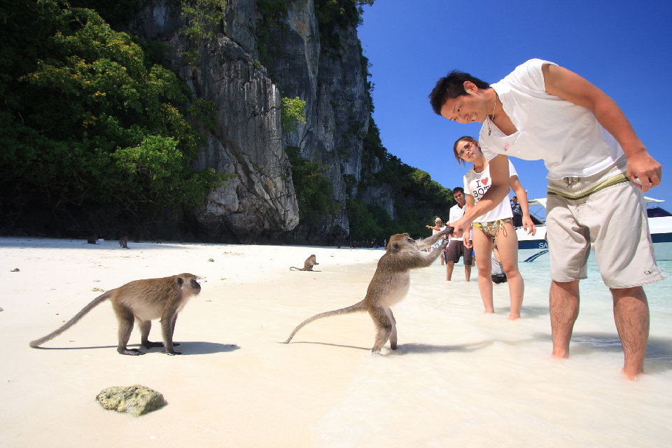 Hang out on Monkey Beach